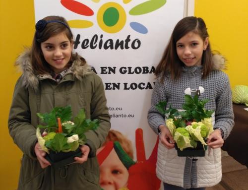 Taller infantil de centros de mesa con verduras