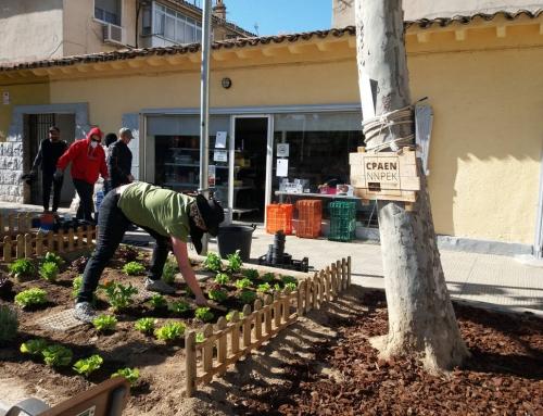 Asalto al jardin del comando borraja en Tudela